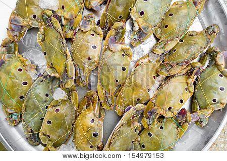 Close up fresh crab for sell at market