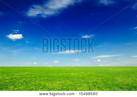 spring meadow and beautiful blue sky