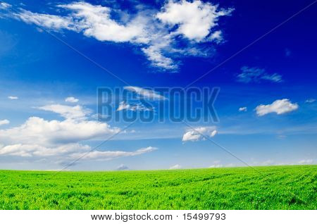 white clouds and a green field