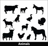 image of farm animals  - farm animals silhouette - JPG