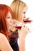 picture of party people  - two girl friends drinking on a party - JPG