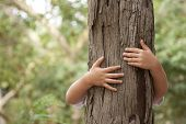 stock photo of environmental protection  - kid hans embracing a tree trunk - JPG