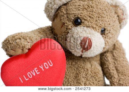 Valentine'S Teddy Bear.