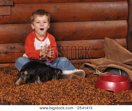 Joy In The Dog Food
