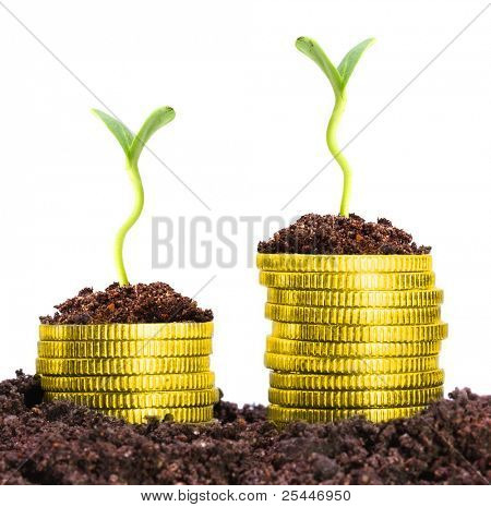 Money growth. Golden coins in soil with young plant. Financial metaphor.