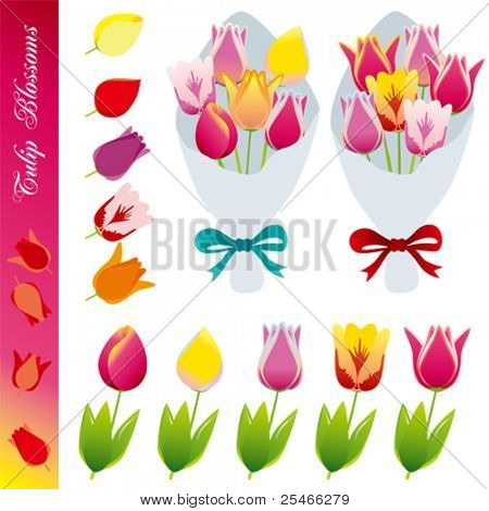 Tulip blossom icons set . Illustration vector.
