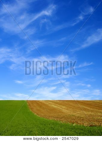 Green Field And Blue Sky 11.