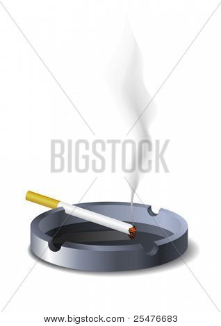 Ashtray on white (vector)
