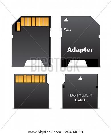 Front and back sides of digital flash memory mini card and adapter for full size standard