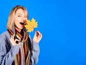 Autumn. Sexy Woman With Maple Leaf. Woman With Autumn Leaf Shows Sign Ok. Yellow Maple Leaf. Woman H poster
