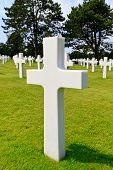 Marble Cross Of Fallen Soldier, American War Cemetery Near Omaha Beach, Normandy (colleville-sur-mer