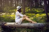 Young Beautiful Girl Sitting In The Forest On The Tree Trunk. Beautiful Girl In The Forest. Beautifu poster