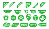 Vegan Green Stickers Set For Vegan Product Shop Tags, Vegetarian Labels Or Banners And Posters. Vect poster