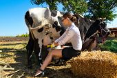 foto of milkmaid  - Young woman milking cow on farm - JPG