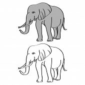 Elephant Cartoon Isolated On White. African Bush Or Forest Elephant And Asian Elephant. Has Large Ea poster