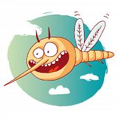 stock photo of gnats  - funny mosquito - JPG