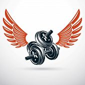Dumbbell With Disc Weight Vector Illustration Created Using Wings. Cross Fit And Bodybuilding Sport  poster