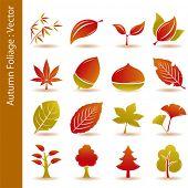 Постер, плакат: Осенняя листва листья иконы set Вектор Иллюстрация
