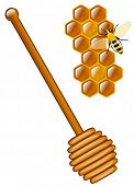 picture of stick-bugs  - Honey stick with a bee and honeycombs - JPG