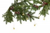 Background With Christmas Tree Branches And Hanging Glitter Balls. Realistic Fir-tree Border, Frame  poster