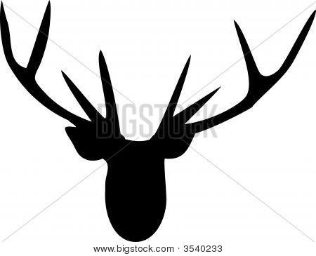 Antler - Deer Head