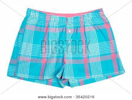 The Blue Plaid Shorts