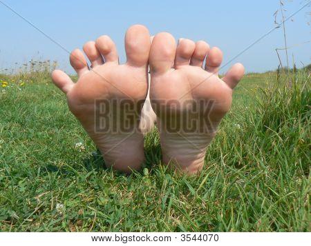 Legs On Grass