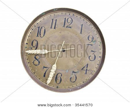 Isolated Harvest Time Clockdial And Ears Arrows