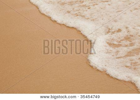 Meer Surfen Makro am Sandstrand