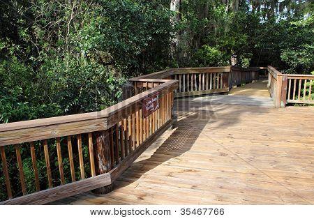 Cypress Boardwalk