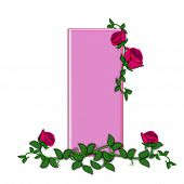stock photo of climbing roses  - The letter I in the alphabet set Blushing Roses is soft pink - JPG