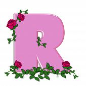 image of climbing roses  - The letter R in the alphabet set Blushing Roses is soft pink - JPG