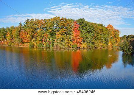 Clear Autumn Skies