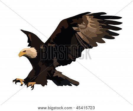 Eagle landing.