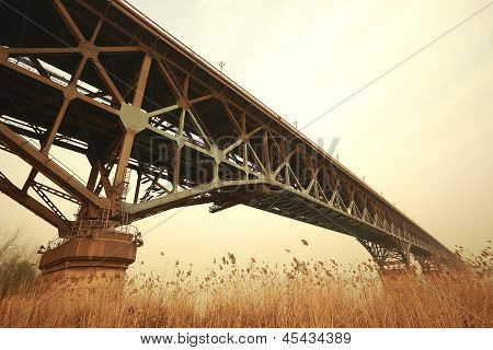 Reed The Foreground And Steel Bridge In Autumn