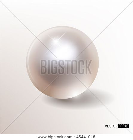 Vector silver pearl.