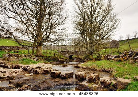 Stepping stones across Cray Gill, Yorkshire