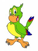 image of polly  - Hand drawn cartoon of a happy colorful bird - JPG