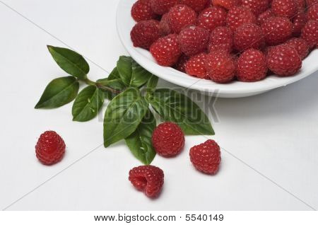 Fresh Raspberries In Bowl