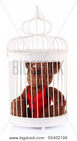 Toy bear in decorative cage, isolated on white