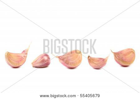 Row of garlic cloves