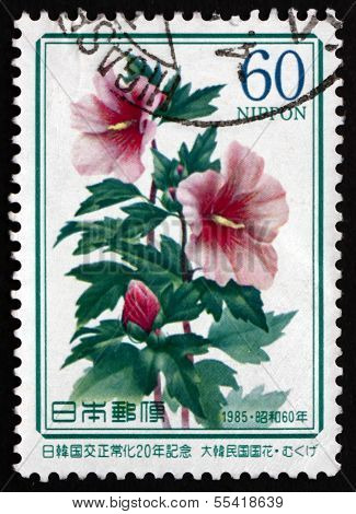 Postage Stamp Japan 1985 Rose Of Sharon, Flowering Schrub