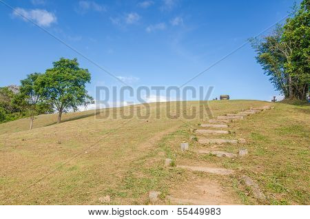 Walkway On A Hill