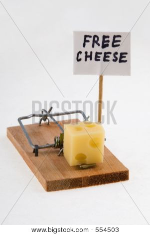 Mouse Trap con queso y