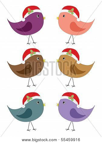 Bird In Santa Hats