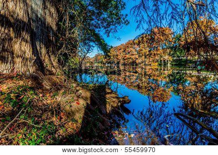 Beautiful Fall Foliage On The Guadalupe River, Texas.