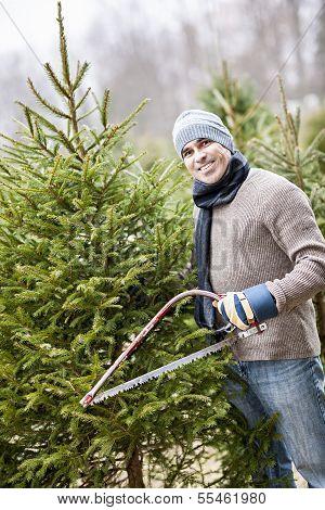 Man Cutting Christmas Tree