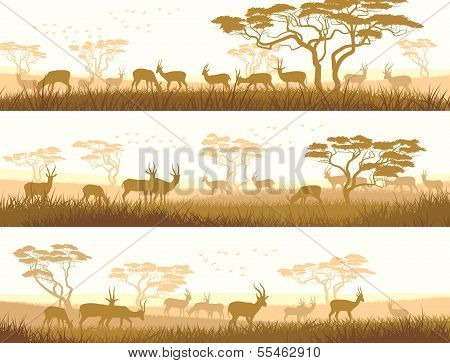 Horizontal Banners Of Wild Animals In African Savanna.