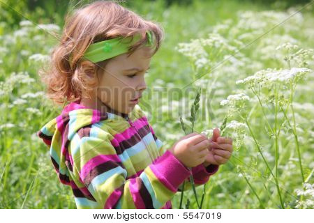 Little Girl On Glade With Grass-blade In Hand