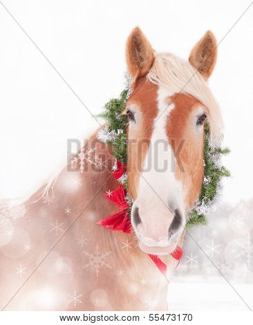 Dreamy Christmas themed image of a Belgian draft horse with a wreath and bow